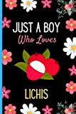 Just A Boy Who Loves Lichis: Cute Lichis Notebook Journal, Blank Lined Lichis Notebook For Boys, Funny...